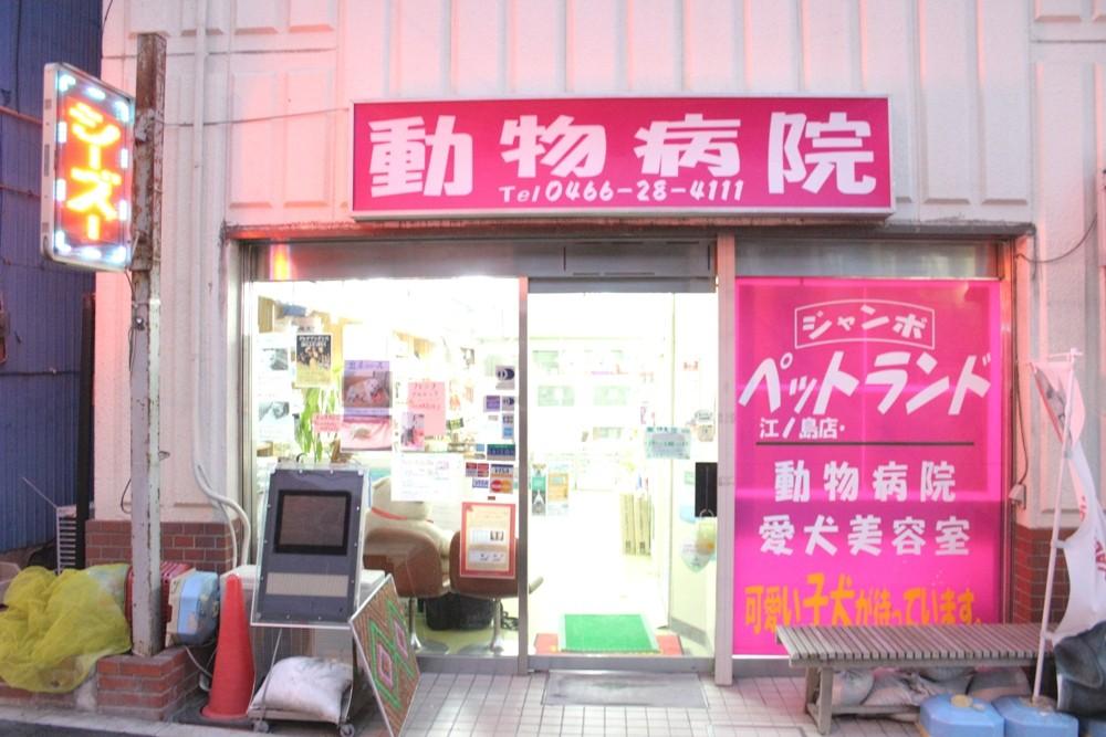地図: ジャンボペットランド動物病院 - 神奈川県藤沢市【動物 ...